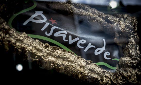 PISAVERDE-1